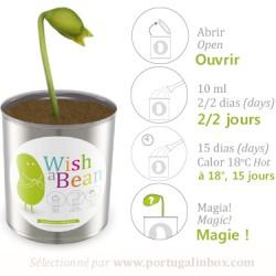 produit-portugais-haricot-magique-:-beijinhos-bisous_84