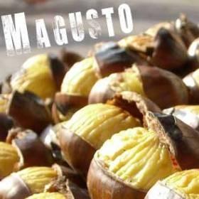 produit-portugais-magusto-saint-martin-au-portugal_113