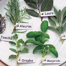 produit-portugais-marinades-et-aromates-dans-la-cuisine-portugaise_122