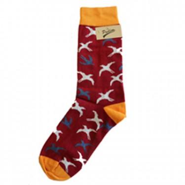 produit-portugais-pudim-chaussettes-oiseaux-rouges-39/45_543_0