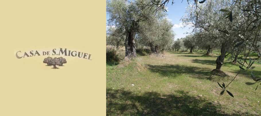 huile d'olive portugaise