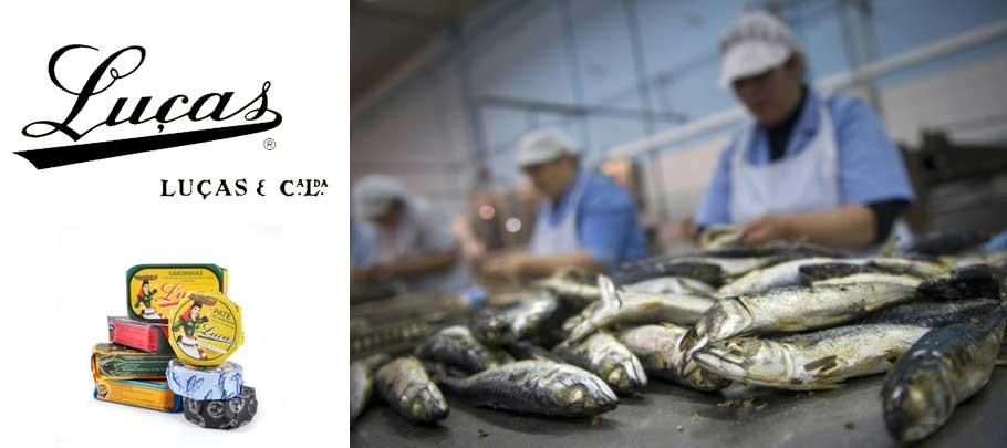 sardines en boite Portugal
