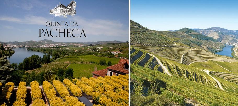 Quinta da pacheca vins portugais